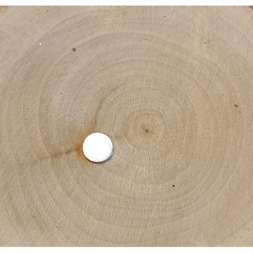 Magnes okrągły 9,5mmx1mm do albumu
