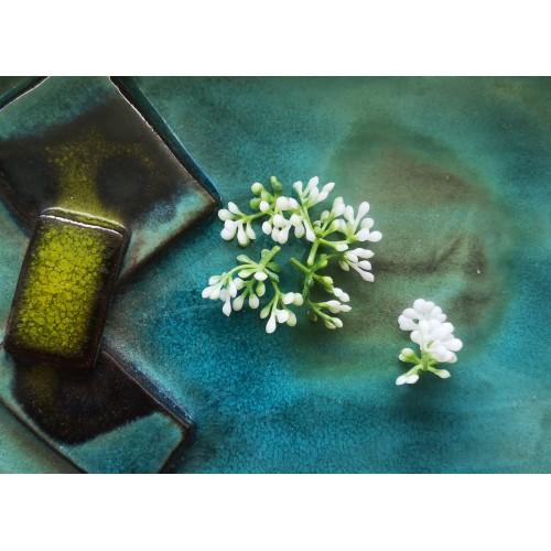 Środki do kwiatów biało zielone